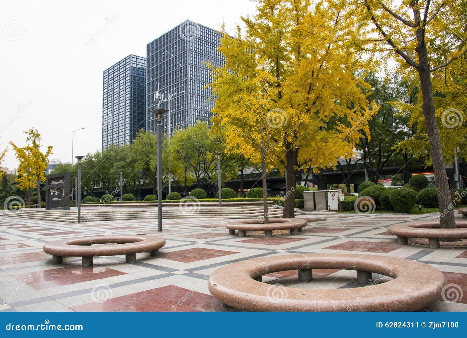 chinois asiatique p kin rue financi re jardin chaise en pierre ronde arbre de ginkgo photo. Black Bedroom Furniture Sets. Home Design Ideas