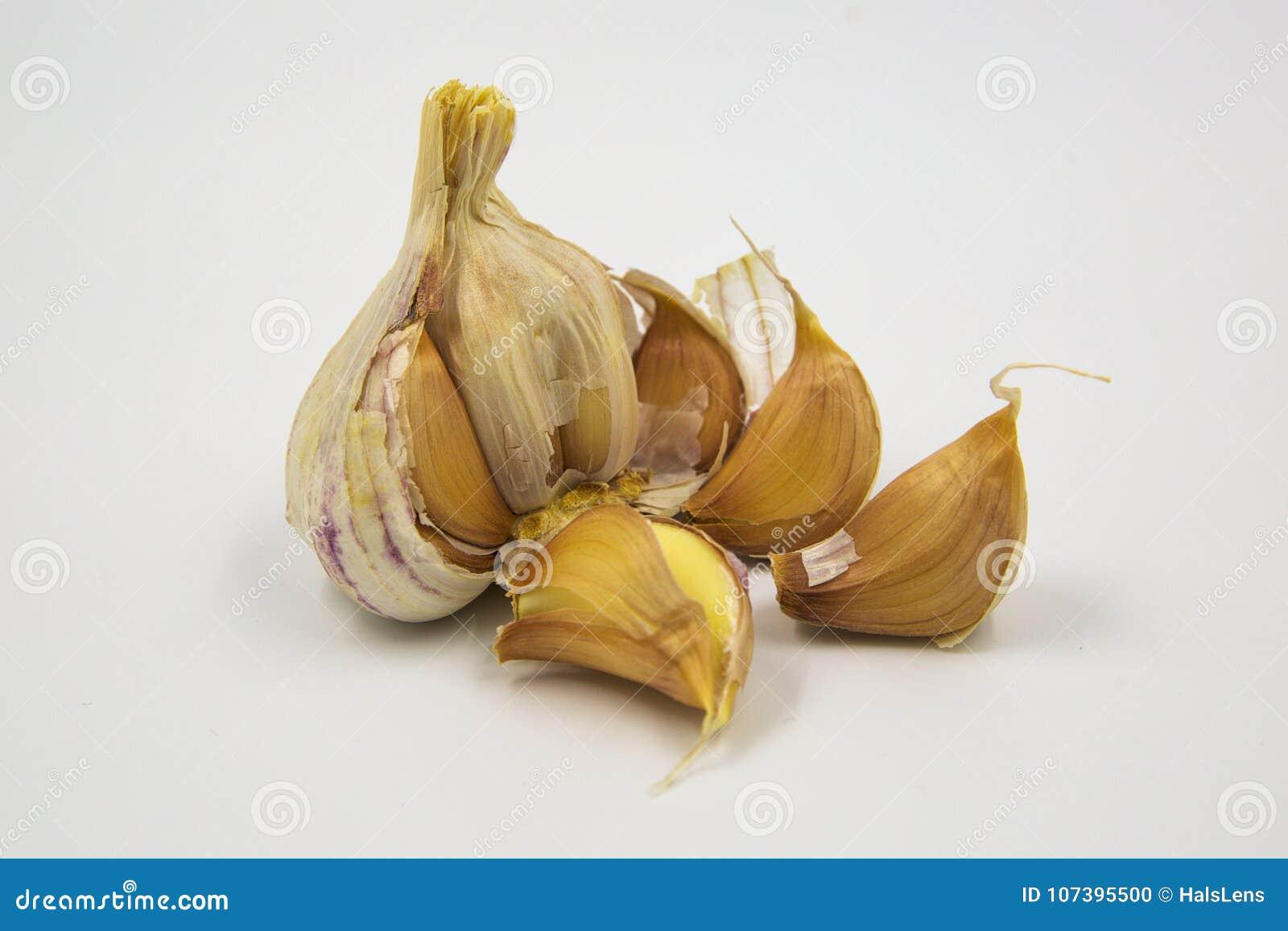 Chiodi di garofano di aglio porpora