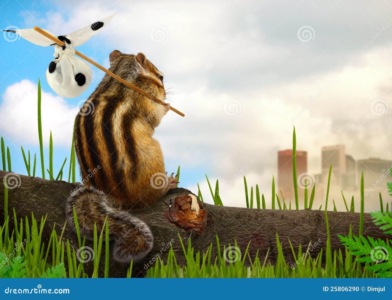 Chipmunk emigrant, ecology concept