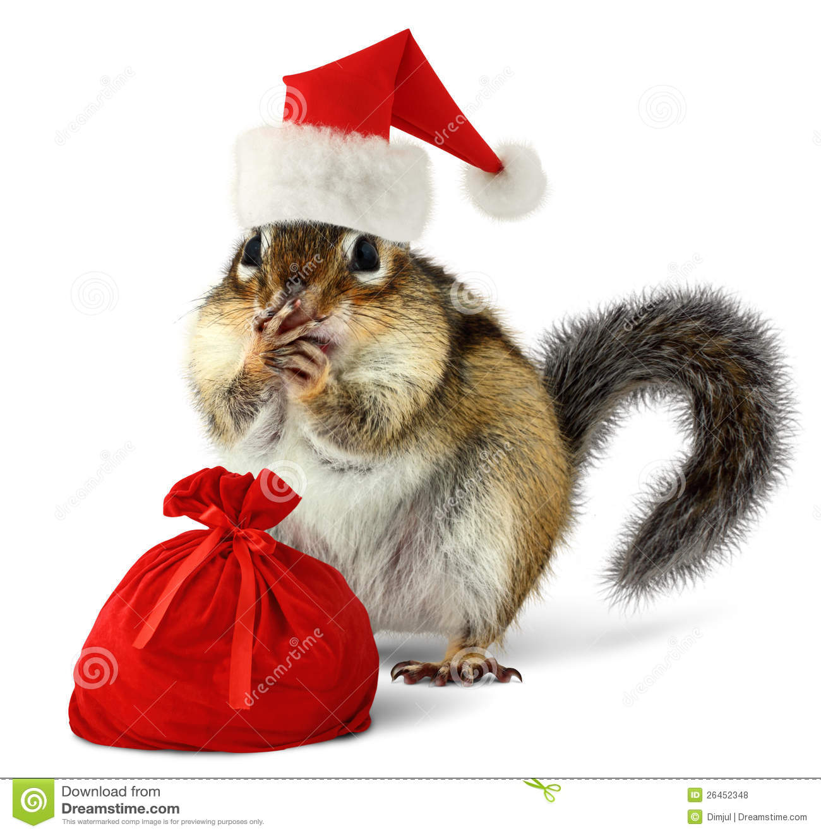Chipmunk w czerwonym Święty Mikołaj kapeluszu z Santas torbą