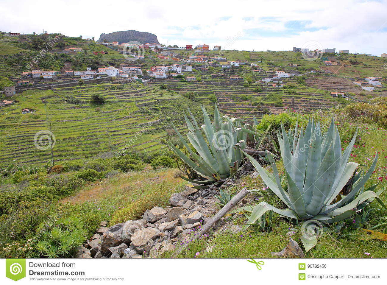 CHIPUDE, LA GOMERA, SPAIN: General view of the terraced fields of Chipude with Fortaleza mountain in the background and Aloe Vera