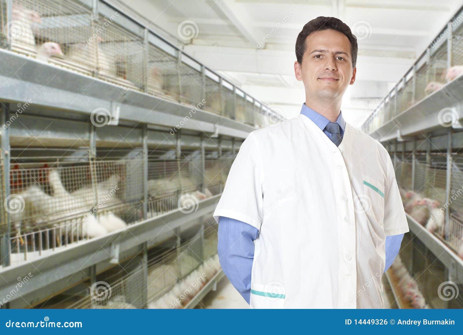 Chirurga veterinary