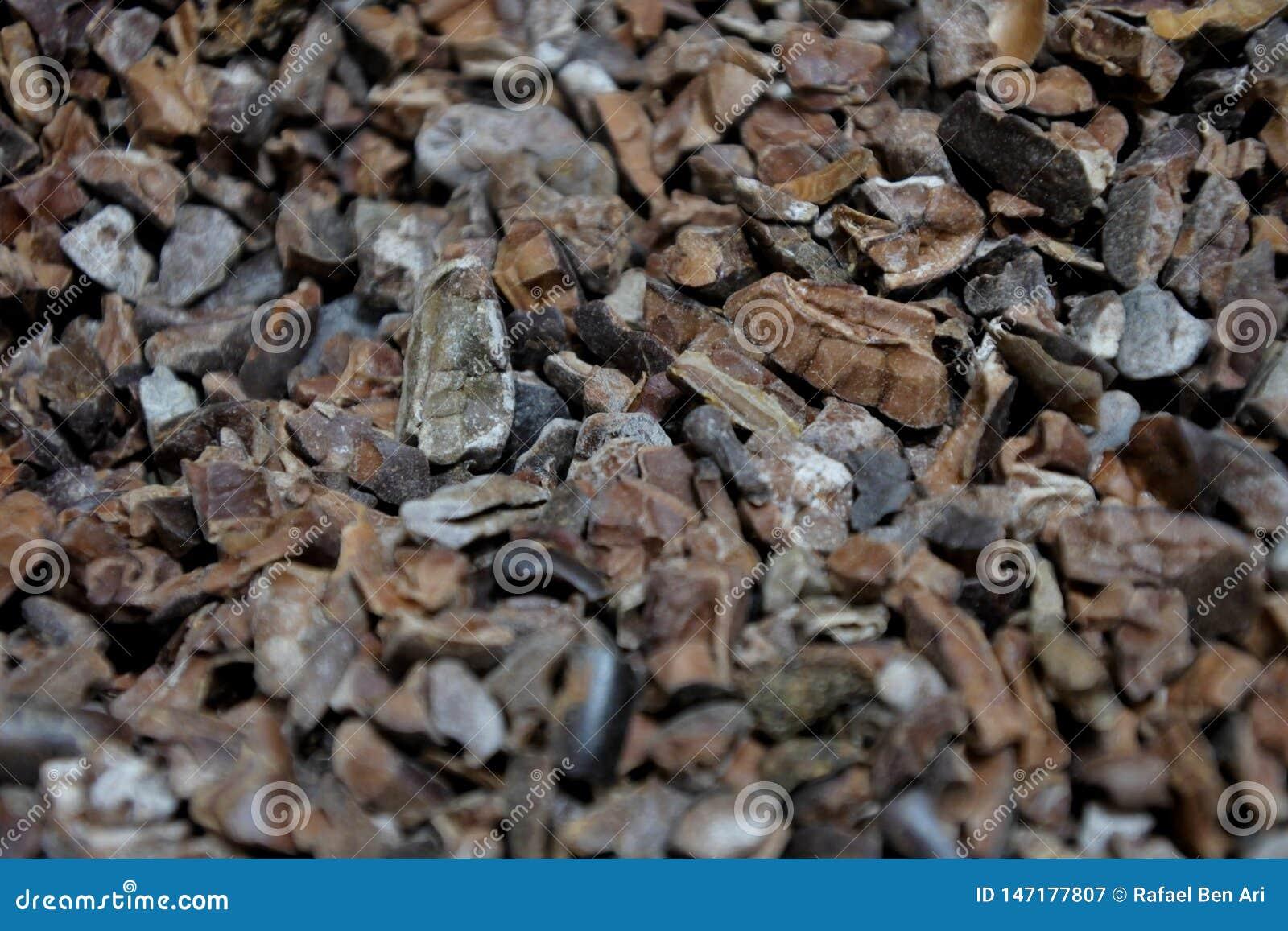 Chiuda su del fondo astratto tostato dei fagioli del cacao