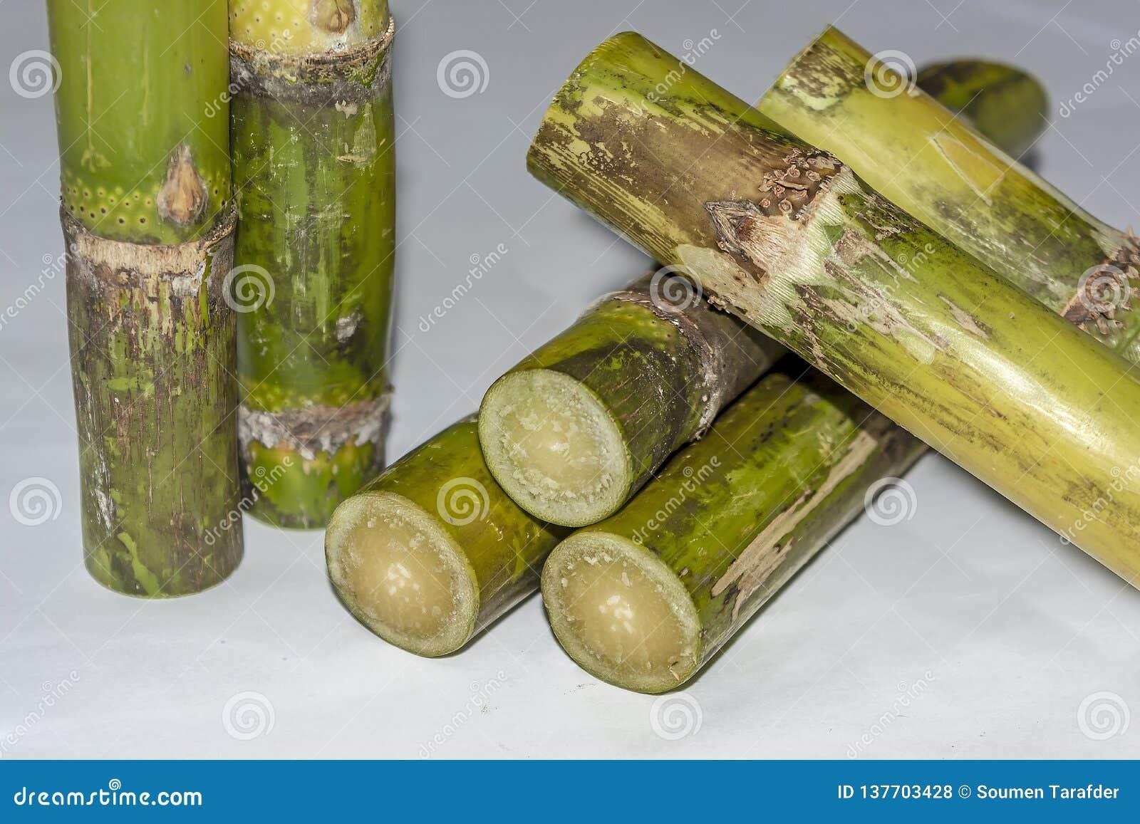 Chiuda su del fondo di Sugar Cane Pieces Isolated On White
