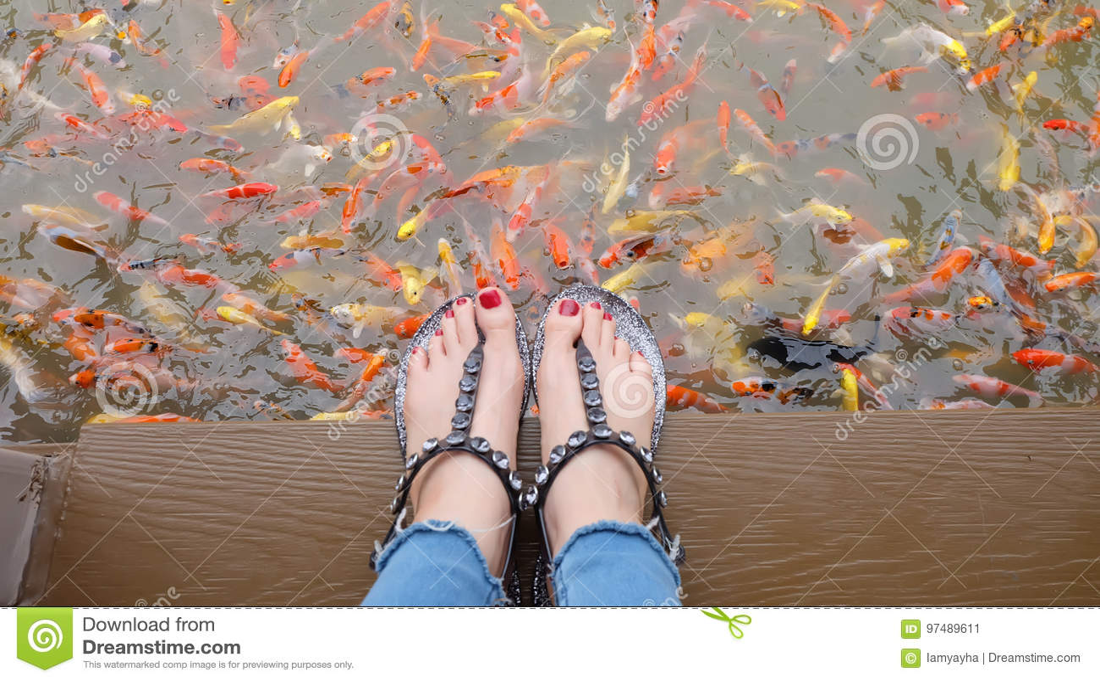 Chiuda su sui piedi del ` s della ragazza che indossano i sandali d argento ed i chiodi rossi con nuoto operato della carpa nei p