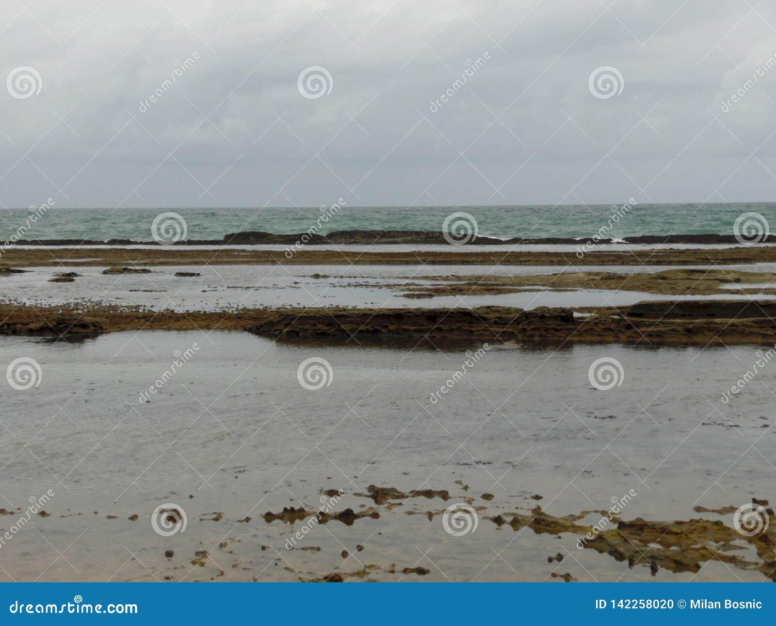 Chmurny dzień w plaży Porto De Galinhas