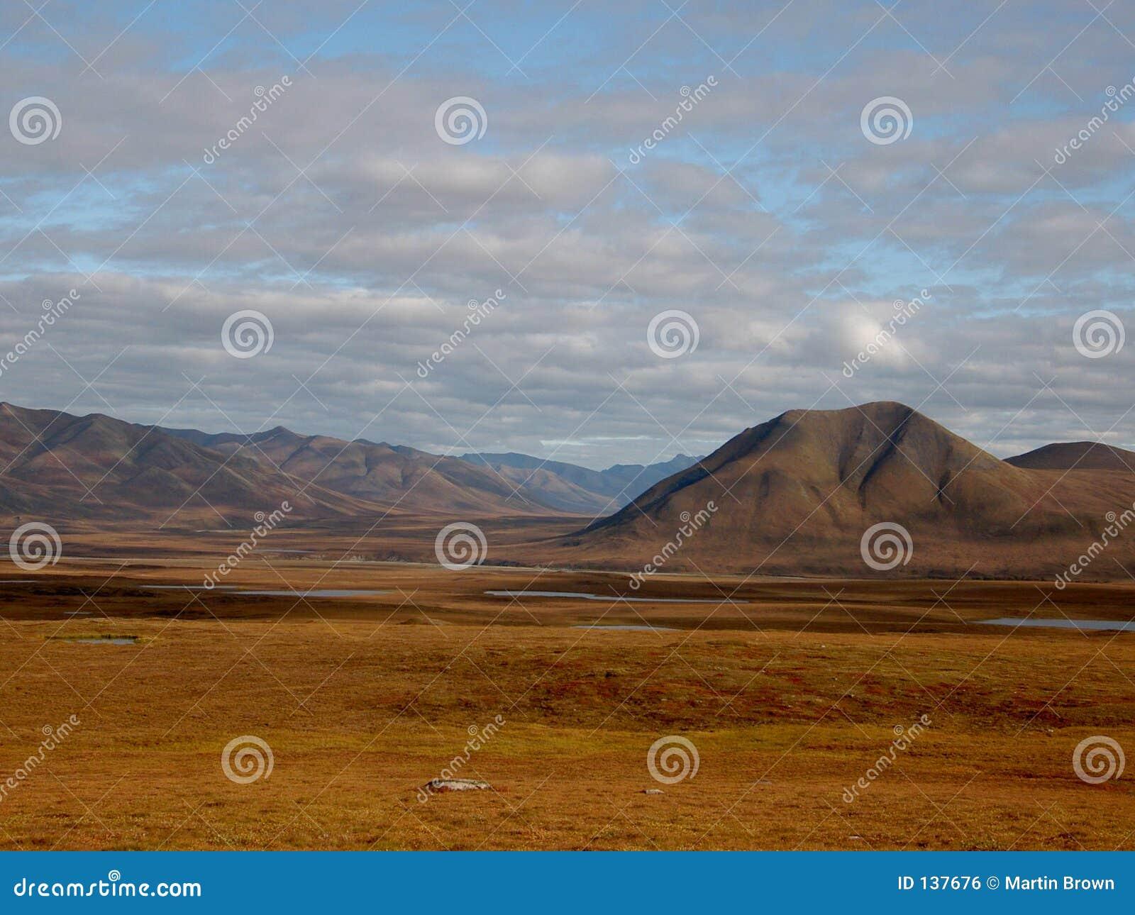 Chmury arktycznych pustyni cienie