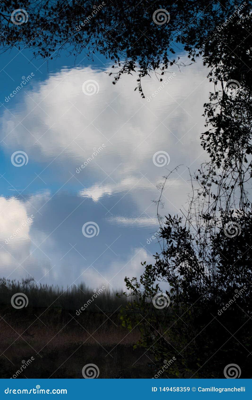 Chmury odbijali w wodzie w Tiber rzece - Rzym, Włochy