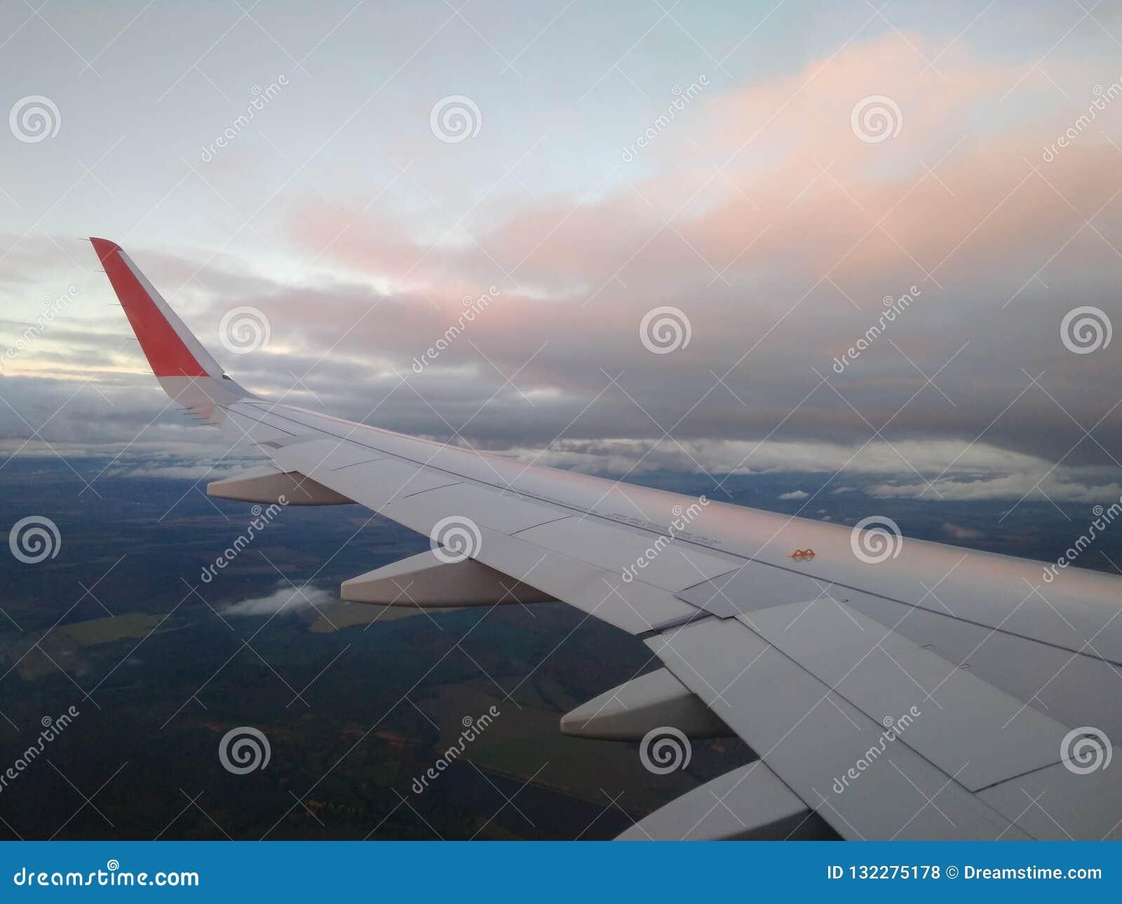 Chmury w różowym promienia zmierzchu widoku od samolotu