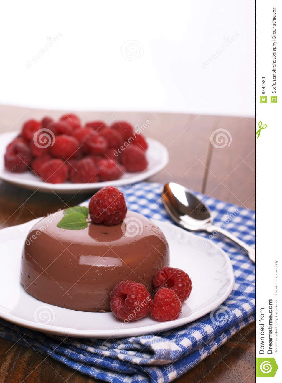 Chocolate Blancmange Stock Images - Image: 9340584