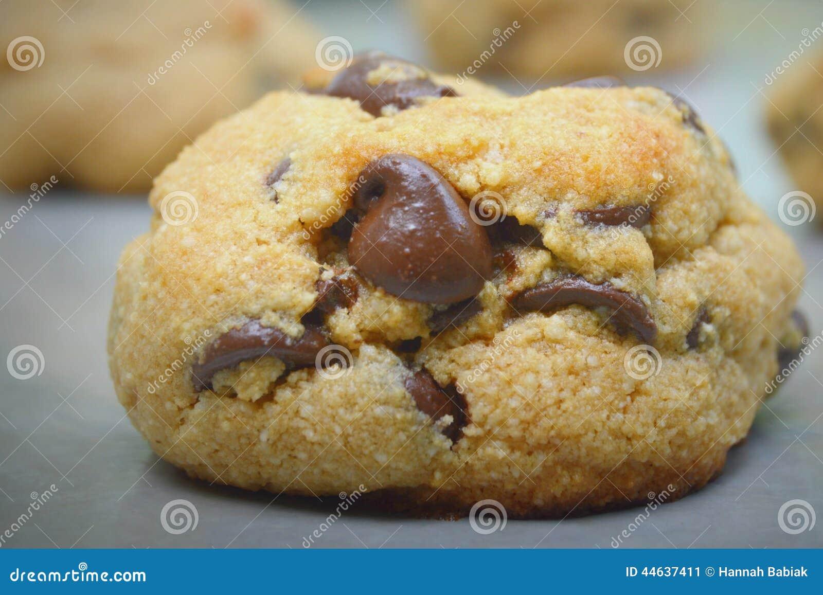 Chocolate Chip Cookie Gluten Free