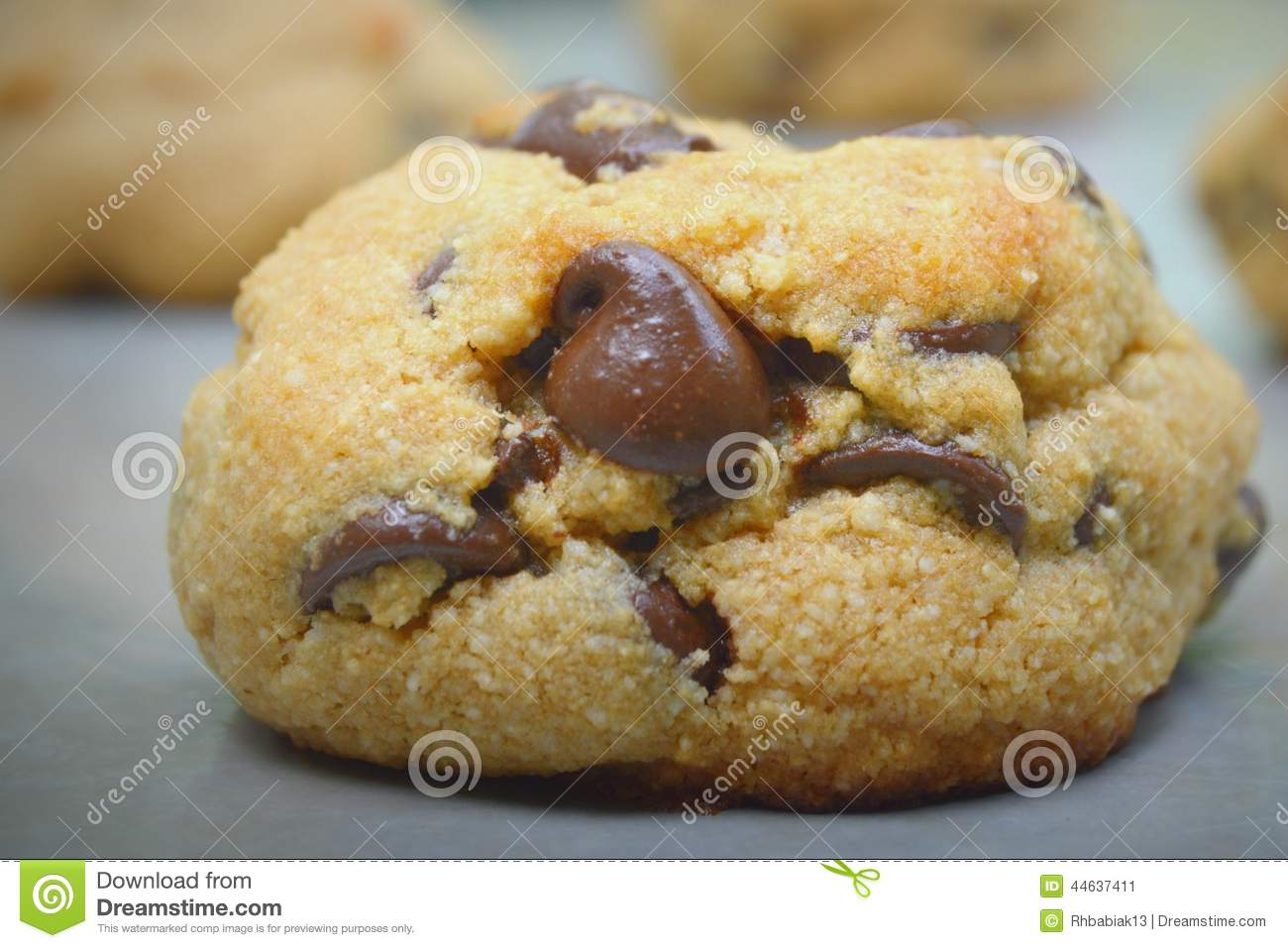 Chocolate Chip Cookie Gluten Free Stock Photo - Image: 44637411