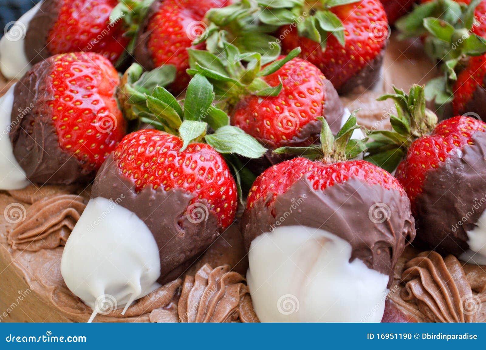 Chocolate Covered Strawberries Stock Photo - Image: 16951190