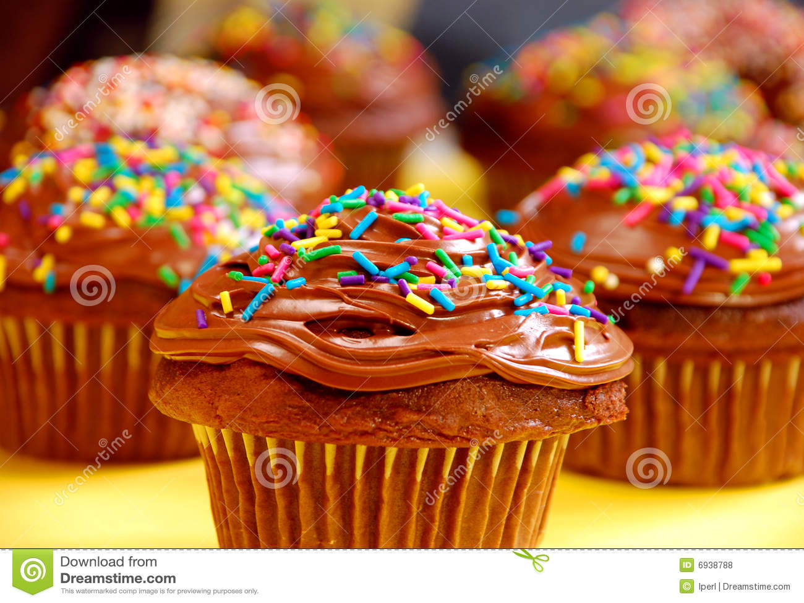 Chocolate Cupcakes Stock Photo Image Of Baked Cupcakes 6938788