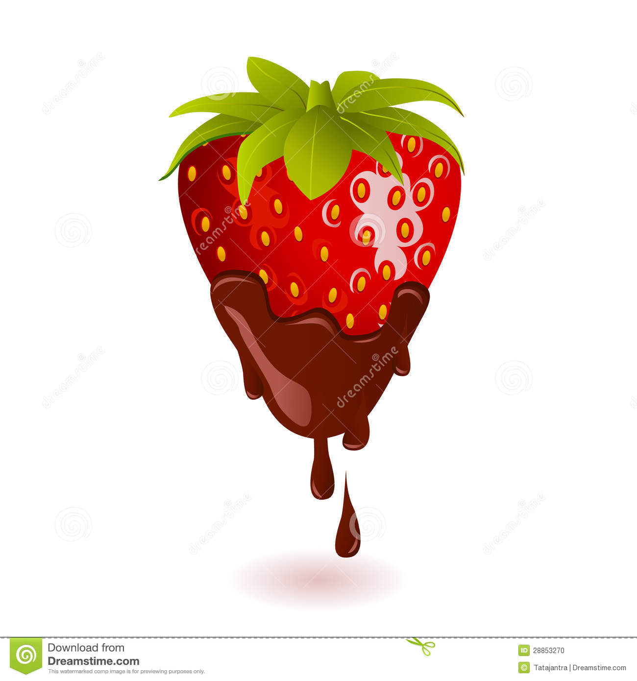 Chocolate Dipped Strawberry on white background -vector illustration Cartoon Chocolate Covered Strawberry