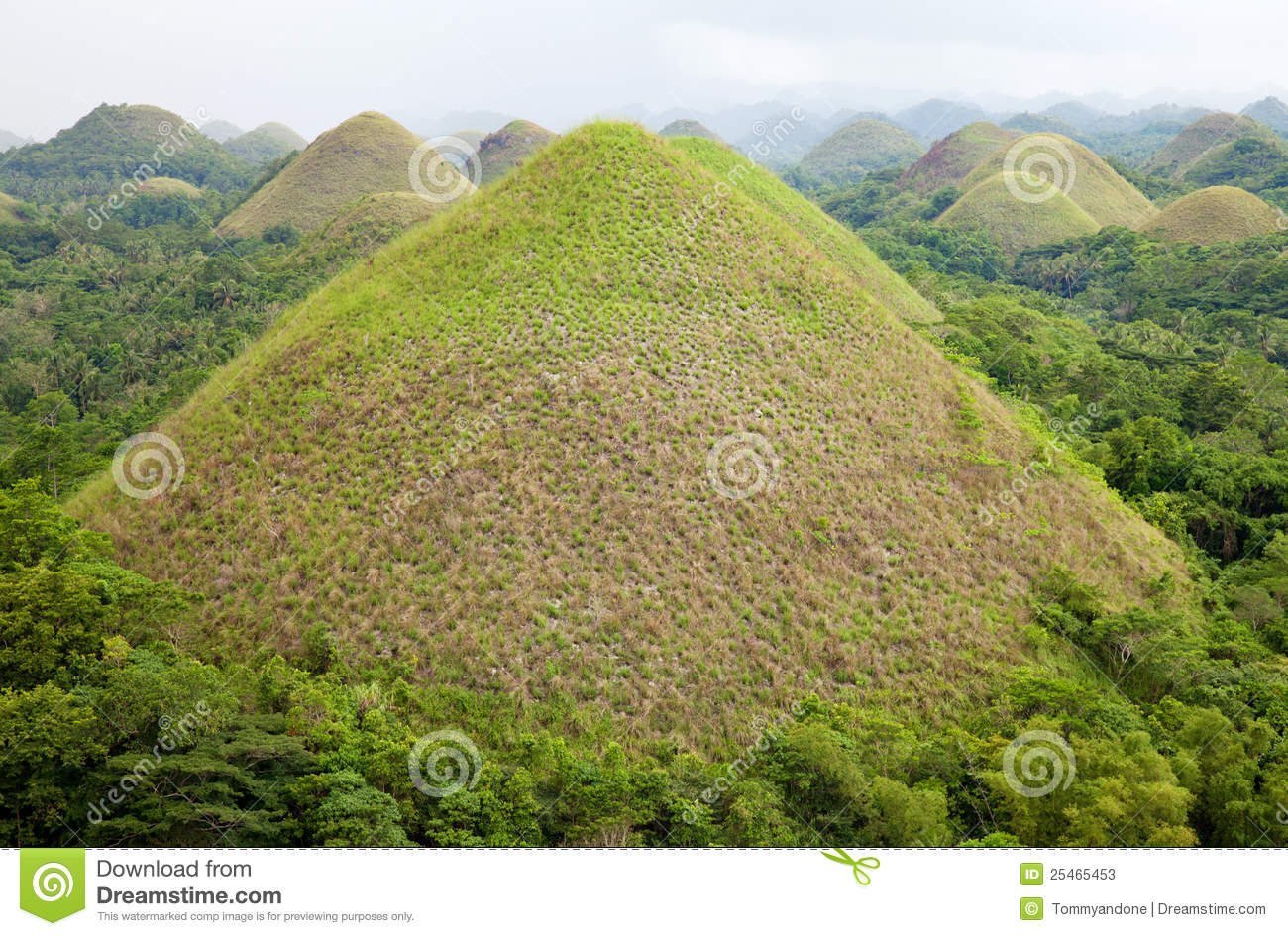Chocolate Hills In Boh...