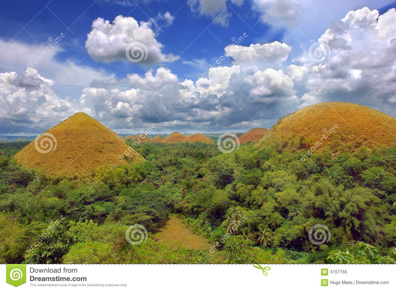 Chocolate Hills And Plants Stock Photography - Image: 7018002