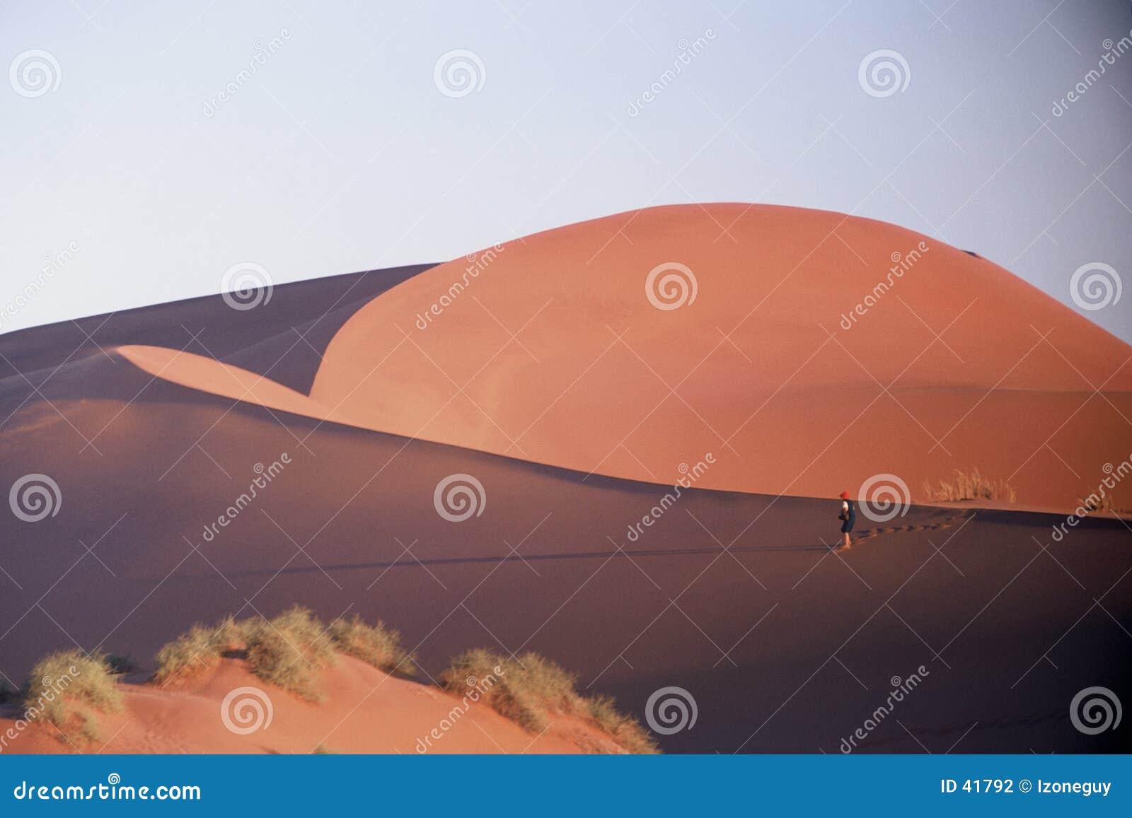 Chodzenie desert