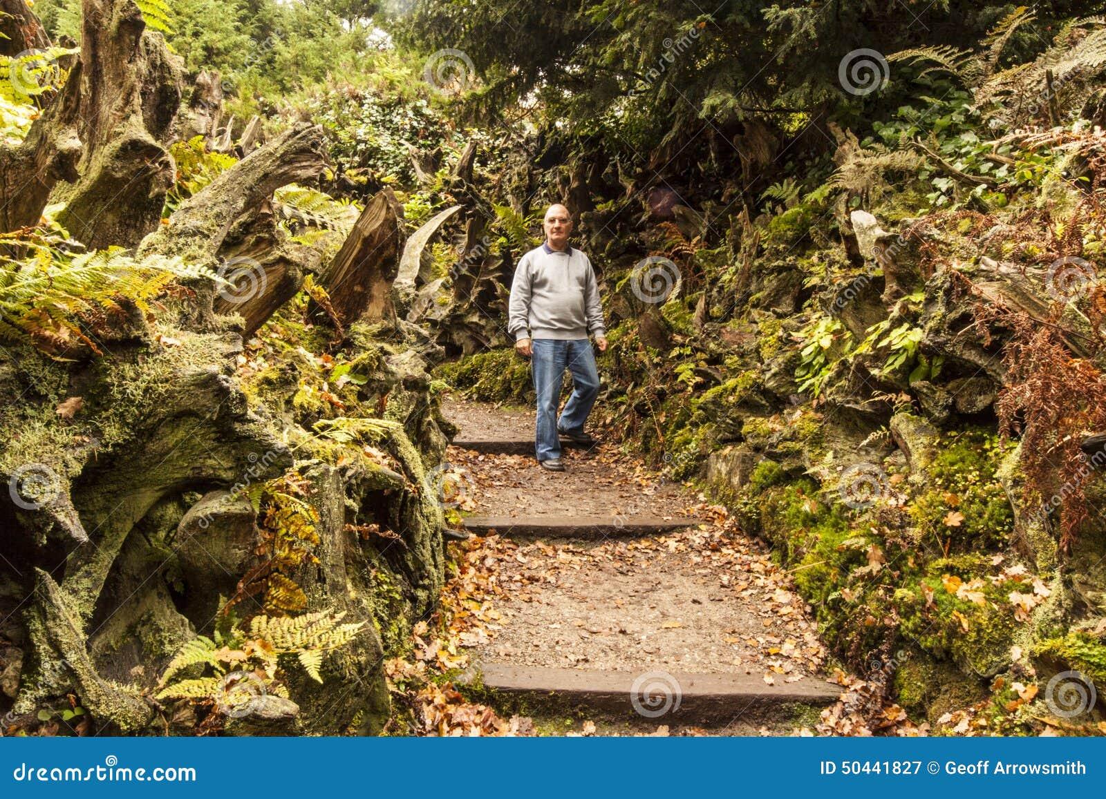 Chodzić przez Stumpery przy Biddulph folwarczkiem