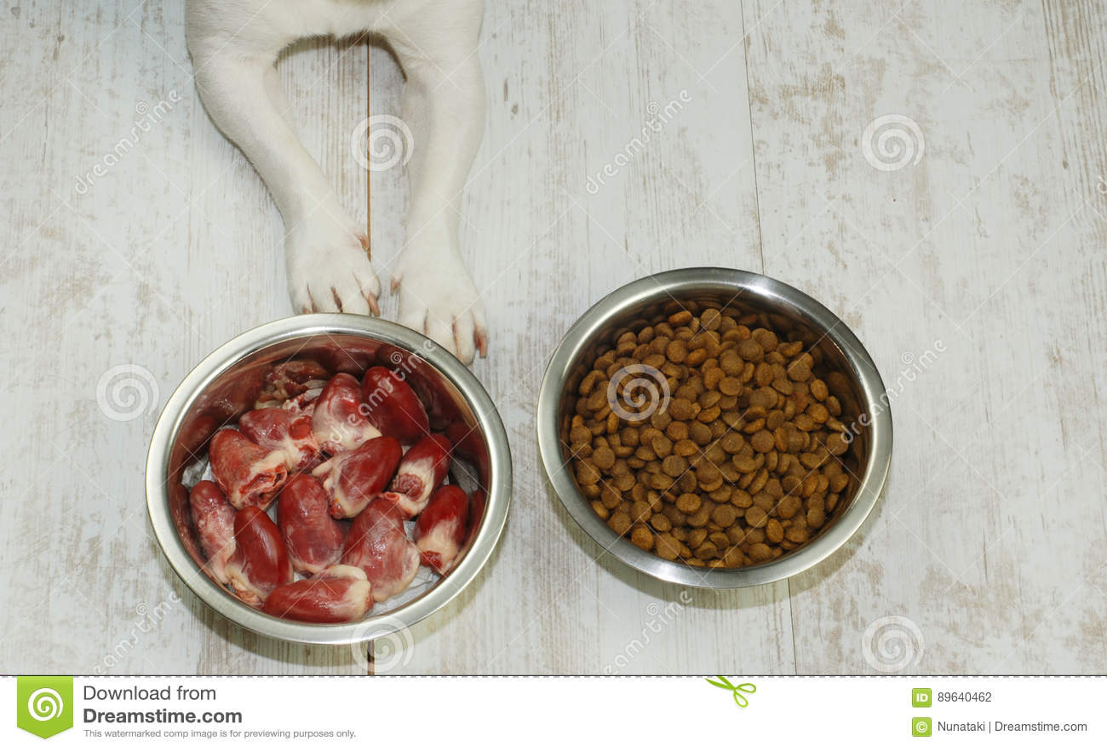 Dry Dog Food Vegetarian