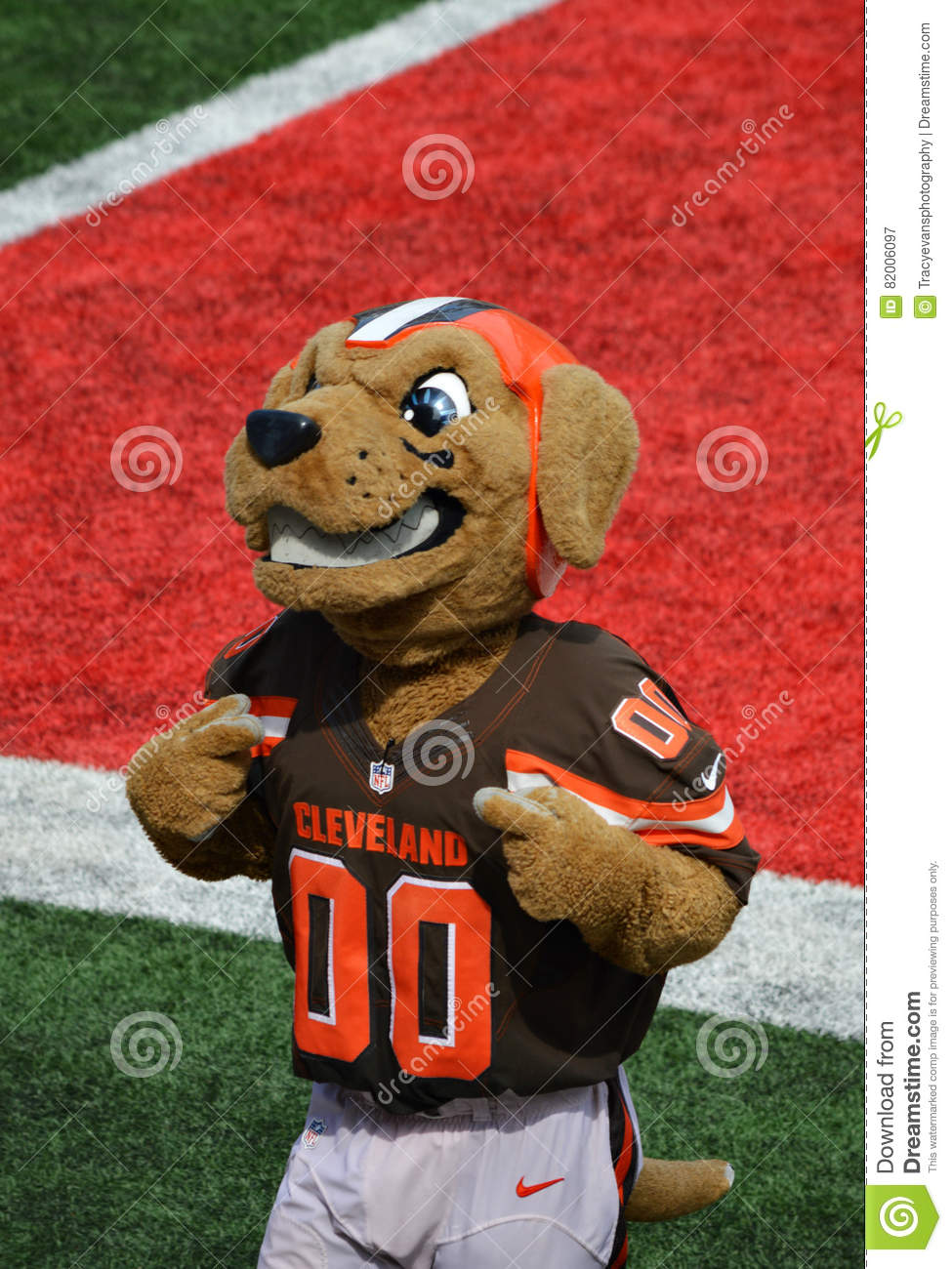 chomps cleveland ohio nfl mascot the cleveland browns