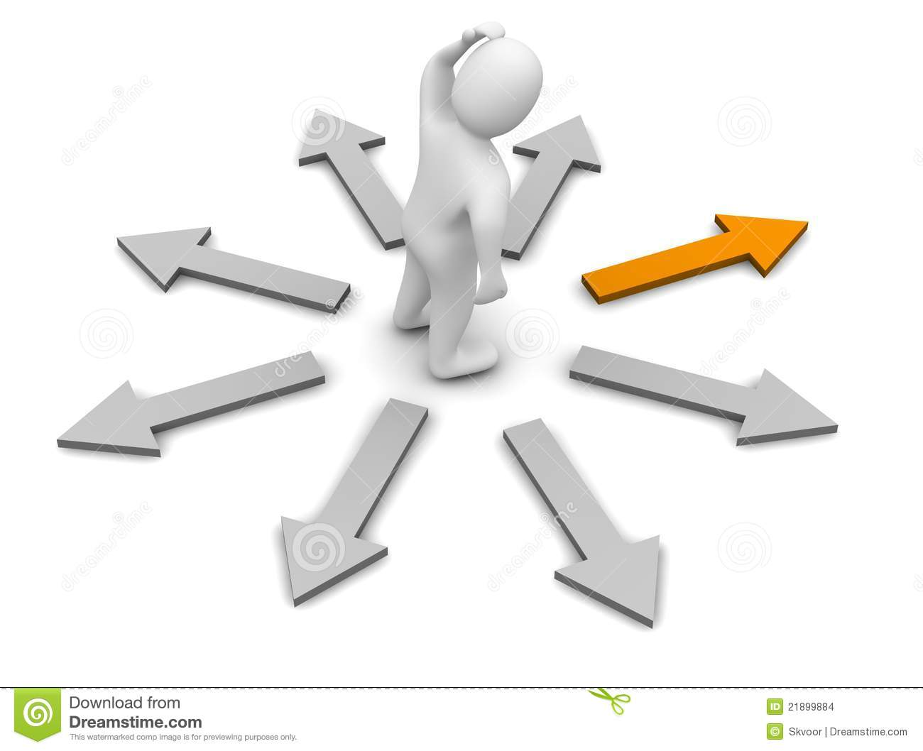 Choose Of Right Direction Stock Images - Image: 21899884