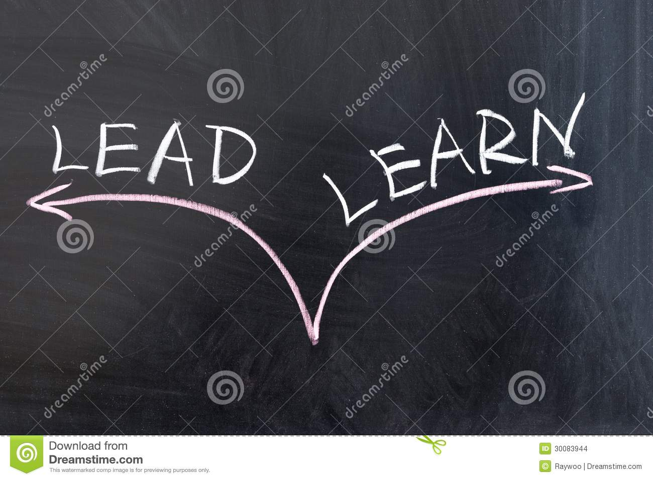 Lead or learn