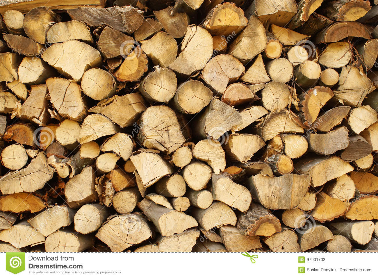 Chopped wood, stacked in a woodpile.