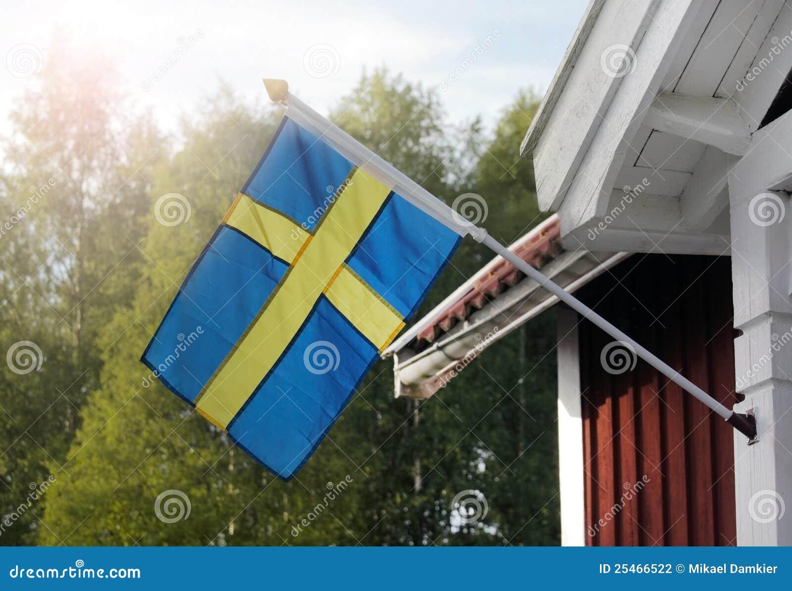 Chorągwiani szwedzi