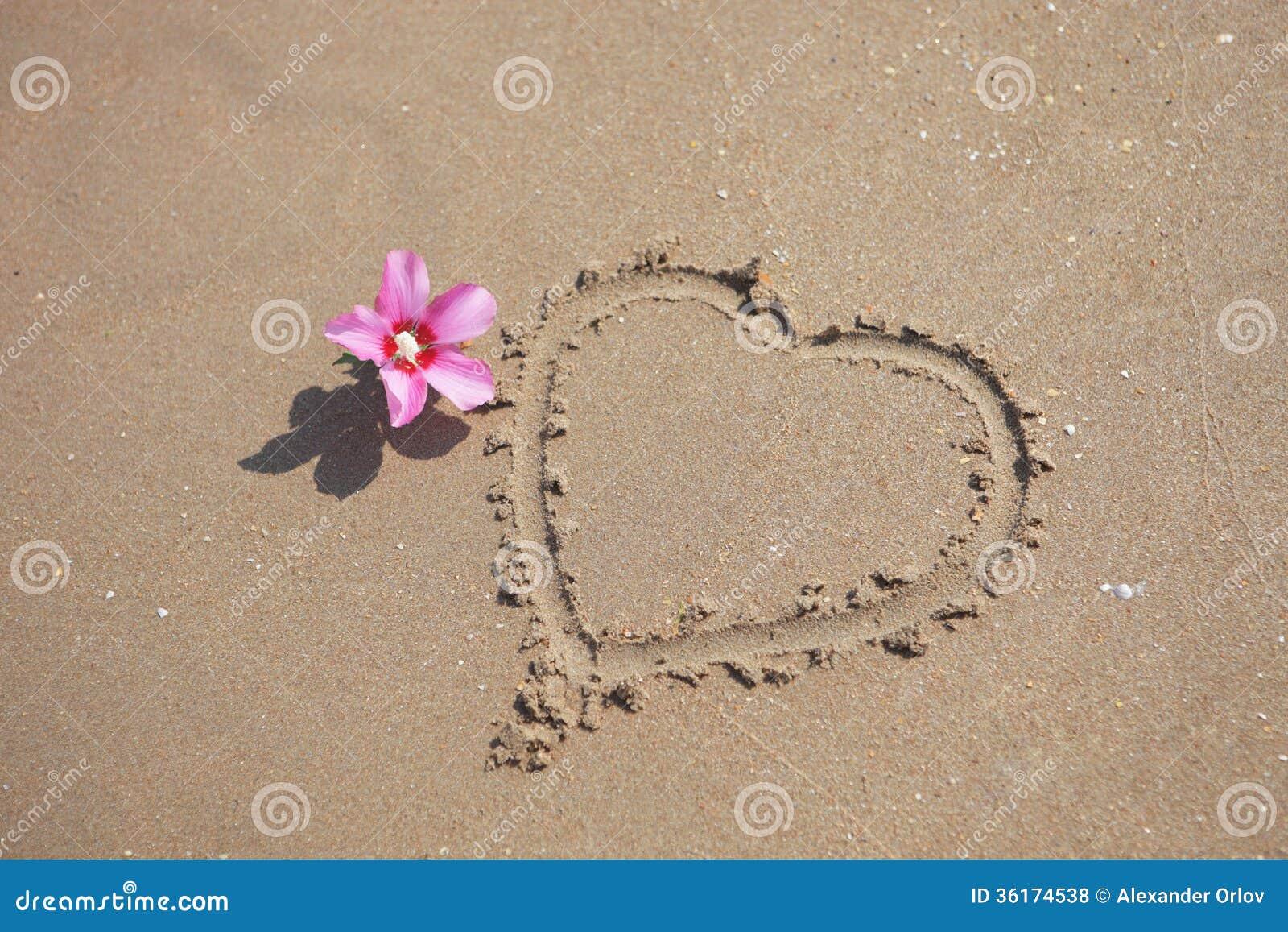 Échouez Le Sable Avec La Forme Rose De Fleur Et De Coeur Photos libres de droits - Image: 36174538