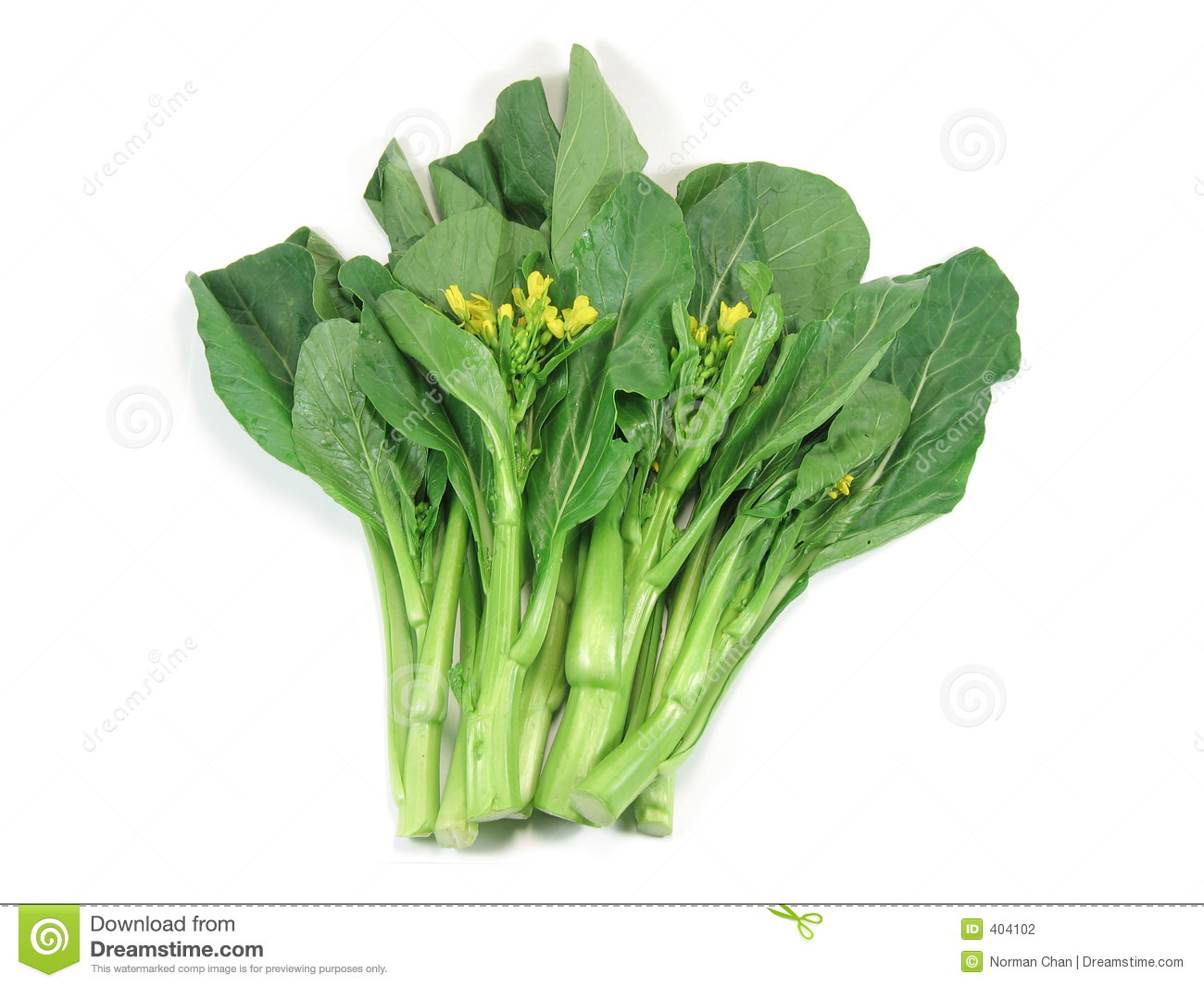 Choy Sum, A Kind Of Chinese Vegetable Stock Photography - Image ...