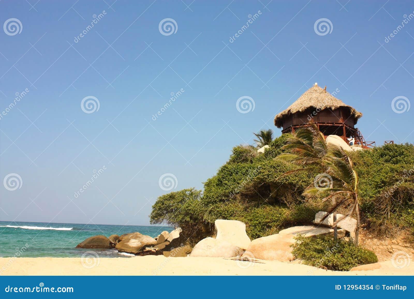 Choza con las hamacas en una playa del caribe colombia imagenes de archivo imagen 12954354 - Fotos de hamacas en la playa ...