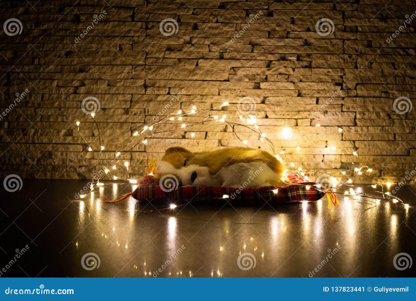 Christams Hund Welpenspielzeugschlafen umgeben durch Girlande Postkarten-Geschenk
