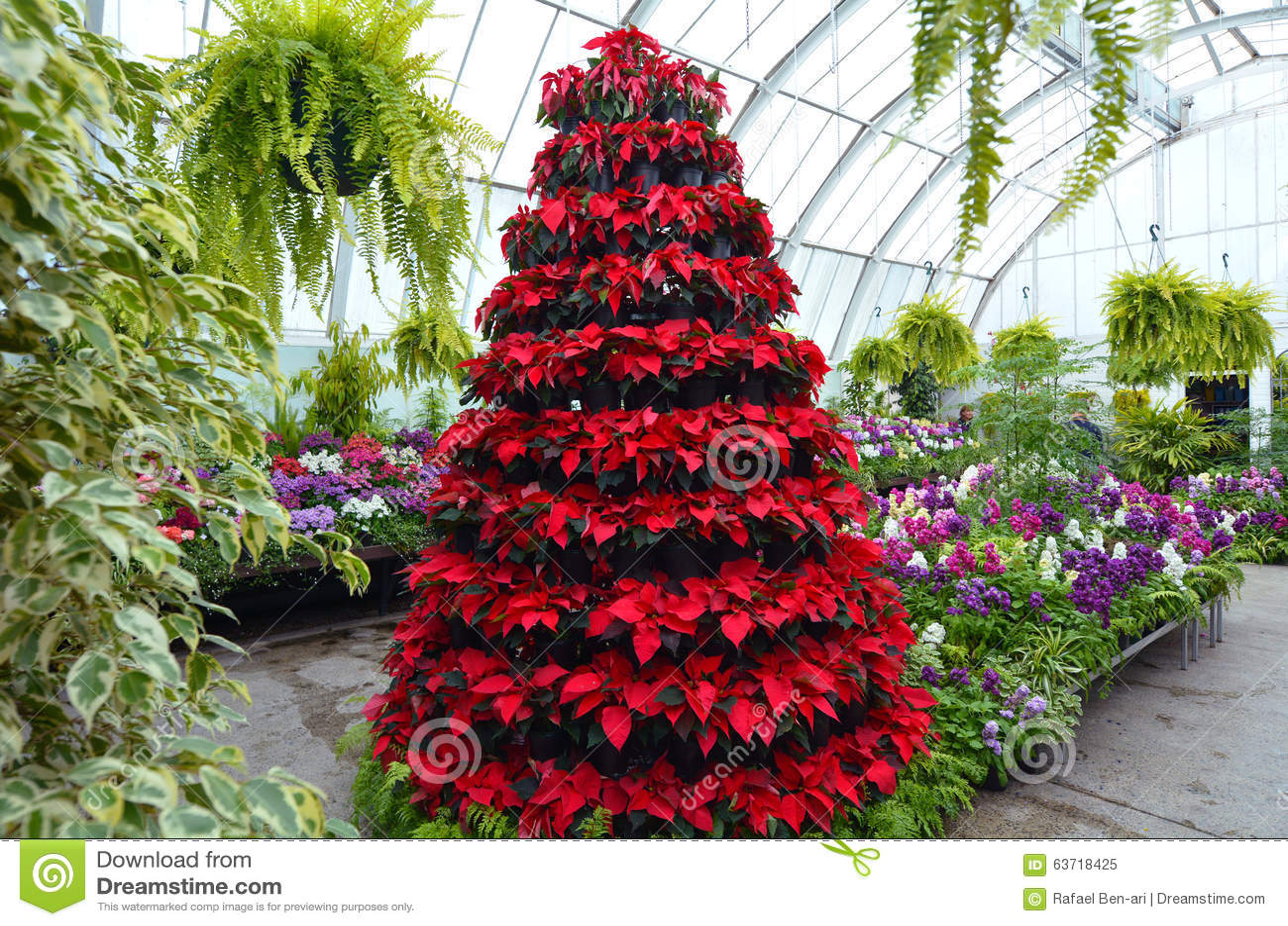 Christchurch Botanical Garden Greenhouse New Zealand Stock Image