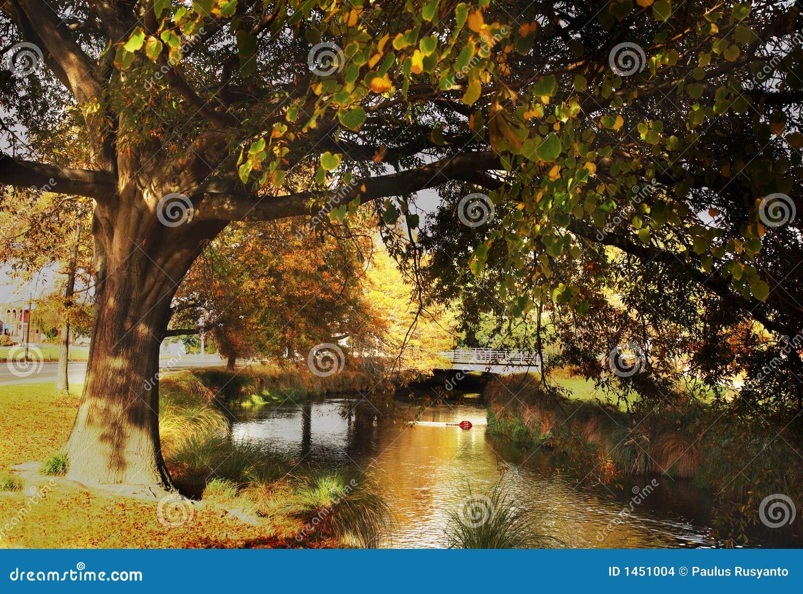 Christchurch in de Herfst