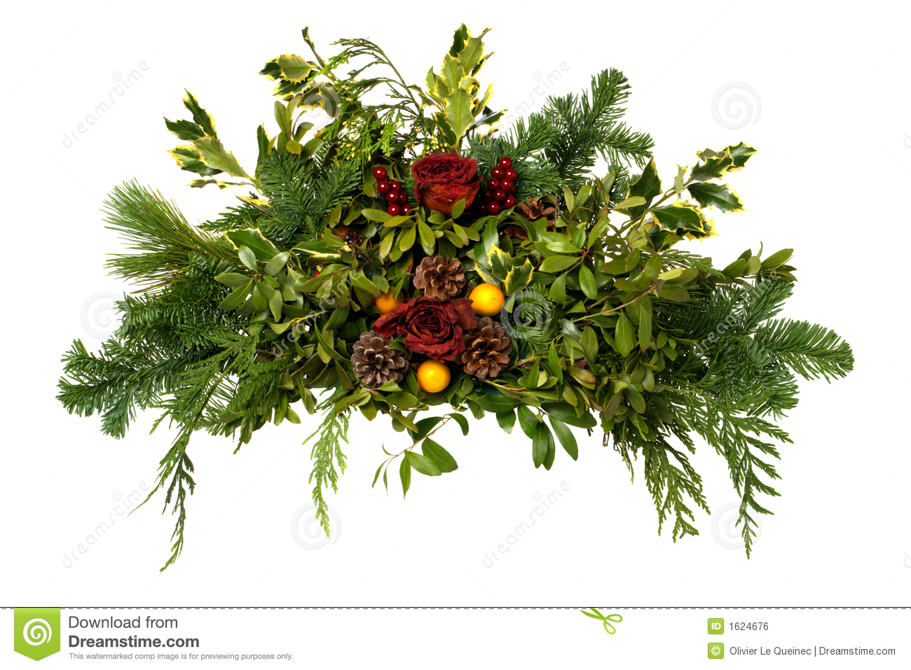 Christmas Arrangement with Pine Cones Isolated