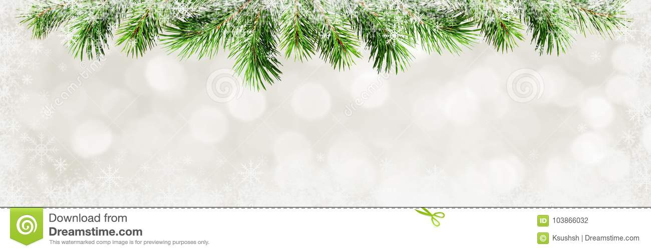 Christmas Top Border.Christmas Background With Green Pine Twigs And Snowflakes