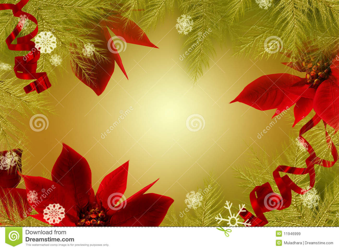 background christmas poinsettia - Christmas Poinsettia