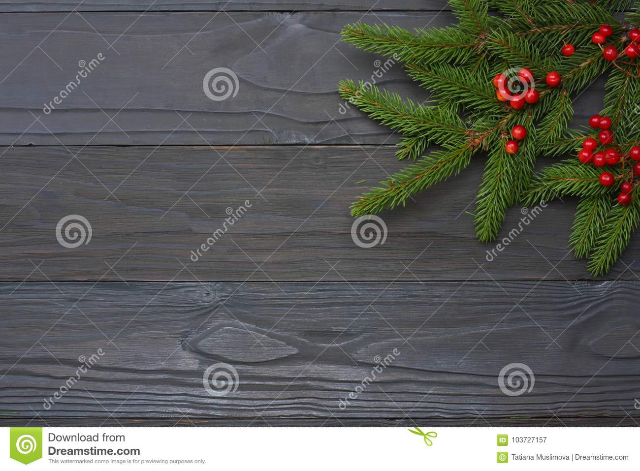 Christmas Background  Top View With Copy Space  Fir Tree On Dark