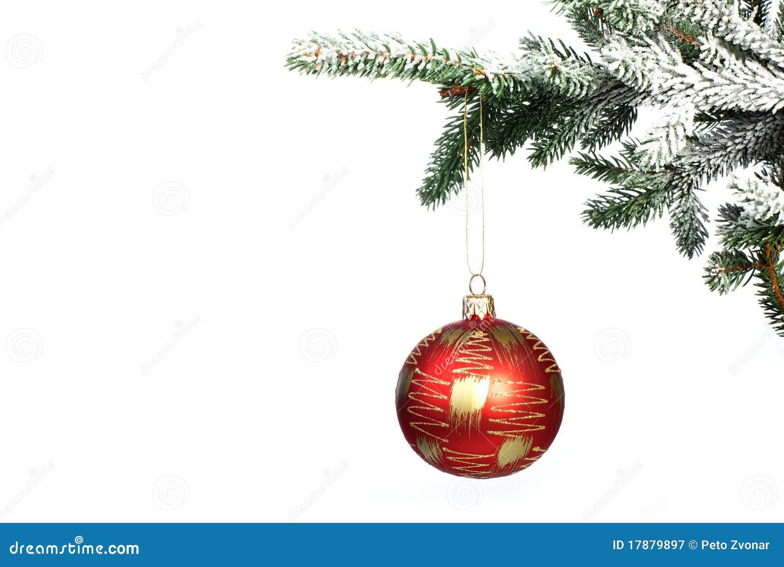 Christmas Tree Ball Placement : Christmas ball on tree royalty free stock