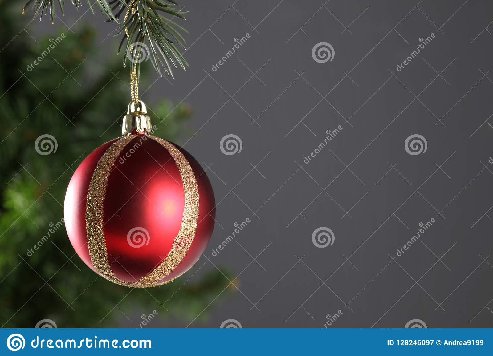 Christmas ball hanged on a christmas tree branch with copy space on grey background
