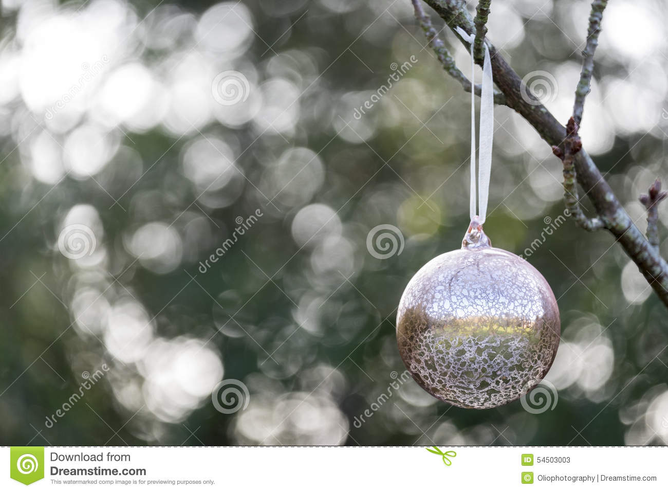 Christmas bauble hanging outside stock photo image 54503003 for Outside christmas baubles