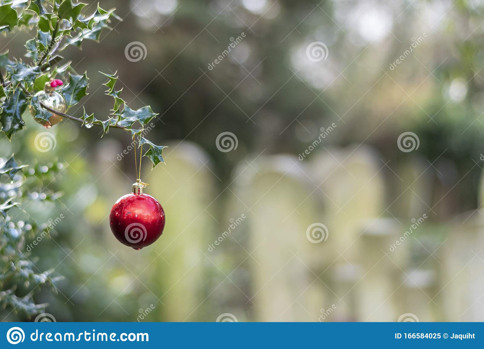 Christmas Baubles In Southampton Old Cemetery Stock Image Image Of Baubles Decoration 166584025