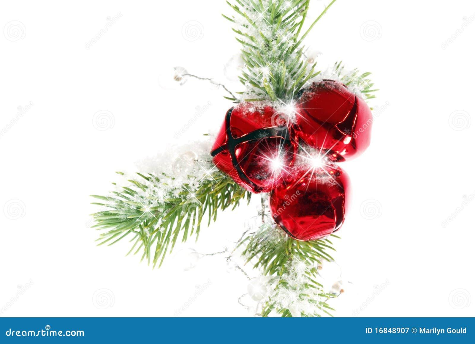 Best christmas greenery card royalty free