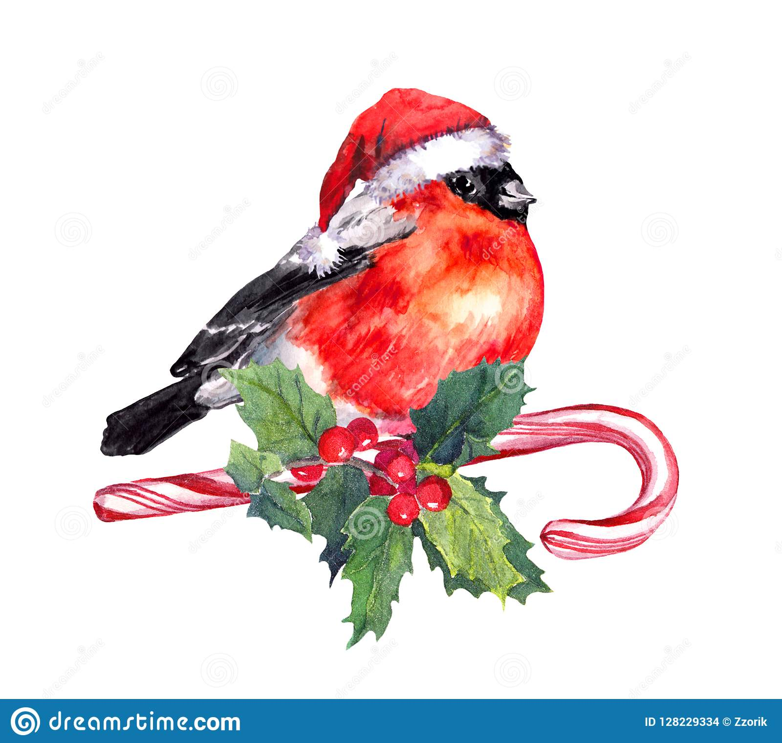 Christmas Bird Finch In Red Santa Hat On Candy Cane And ...