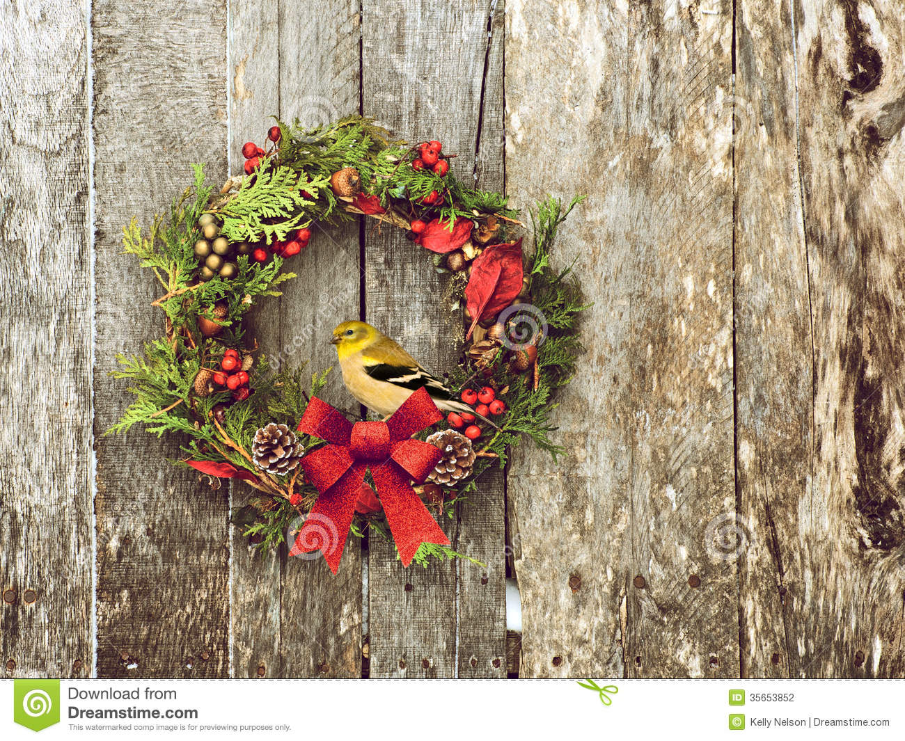Christmas Wreath With Natural Decorations A Beautiful American Goldfinch Perched Hanging On Rustic Wooden Wall Copy Space