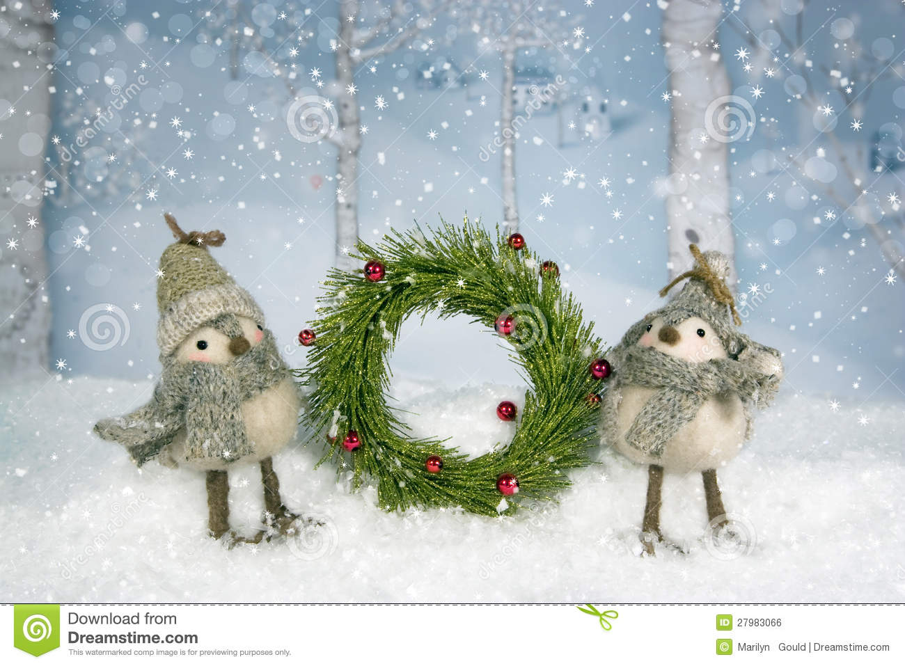 Birch trees in the winter stock photo image 2170700 - Christmas Birds Wreath Royalty Free Stock Image Christmas Birds Wreath Birch Trees In The Winter