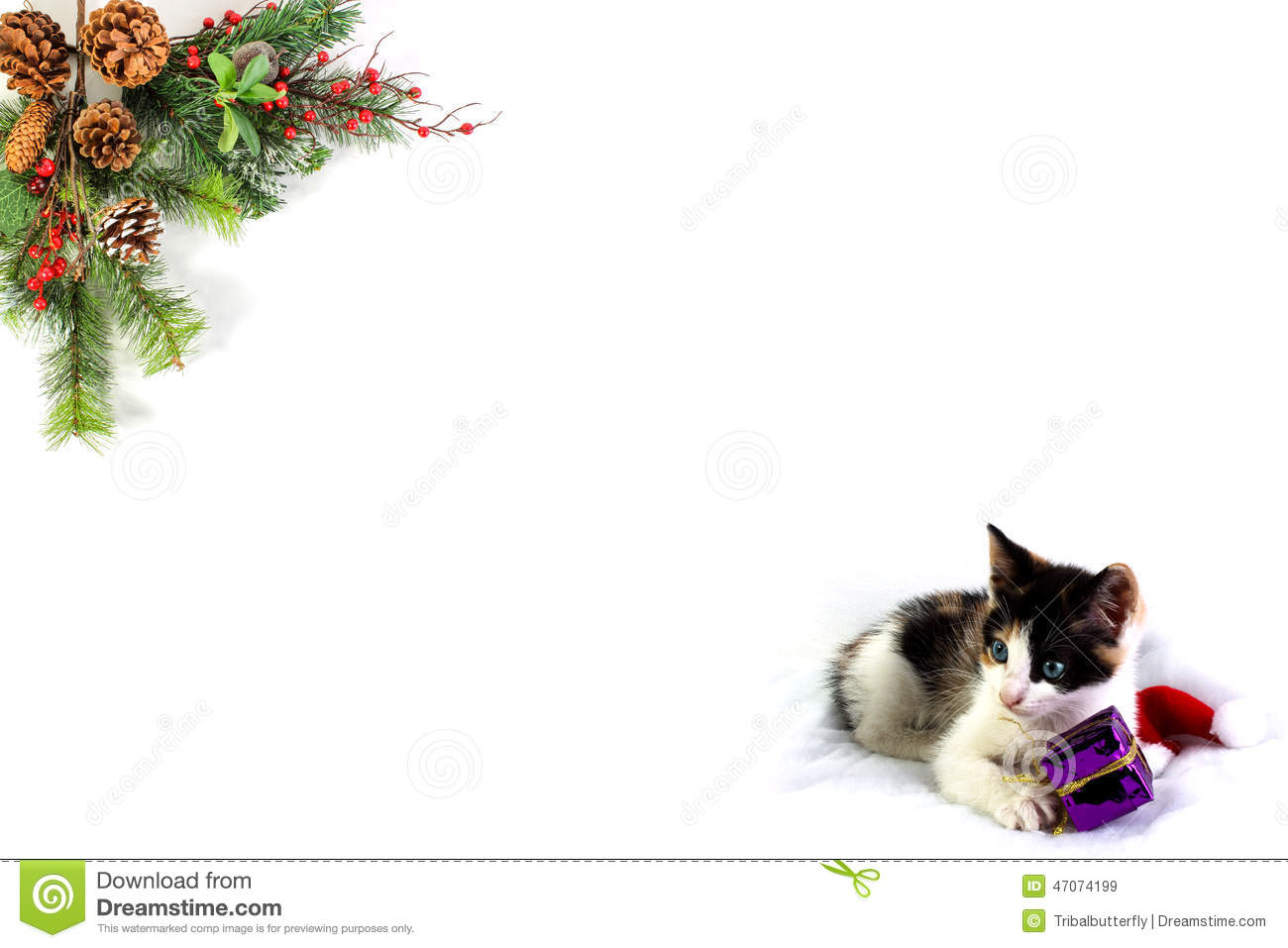 Christmas Blank For Your Own Words Stock Image Image Of