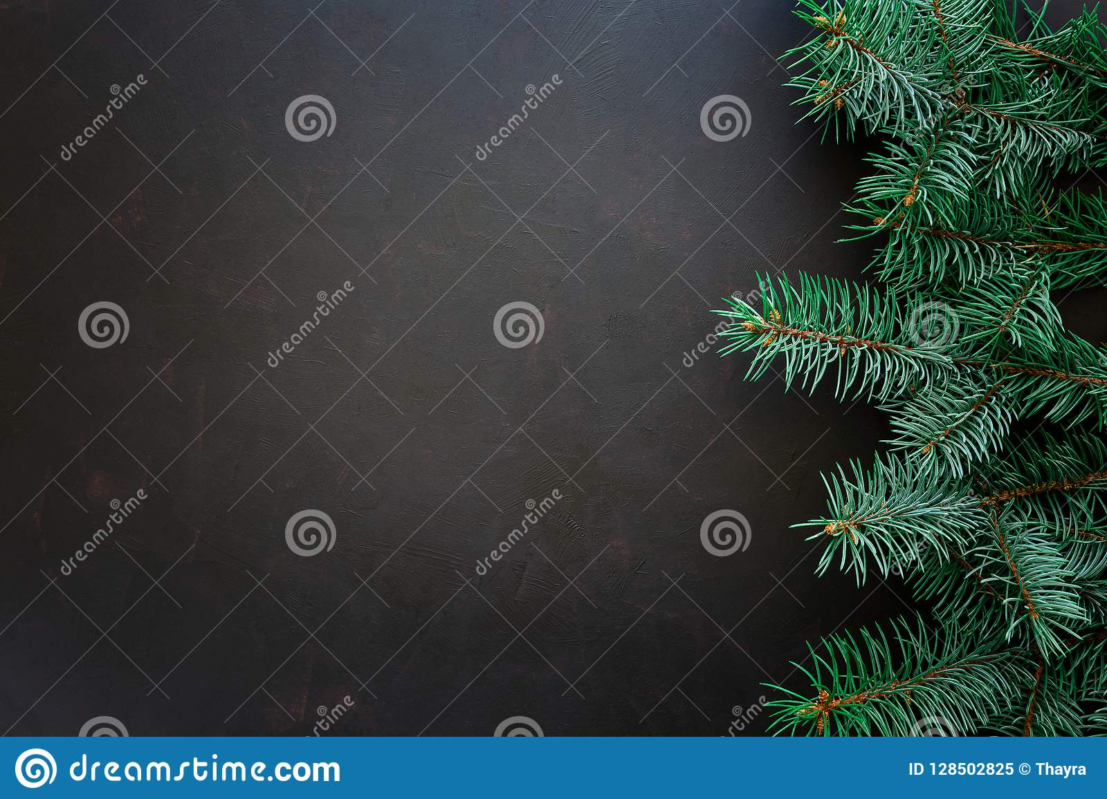 Christmas Border. Fir tree branches on dark wooden background