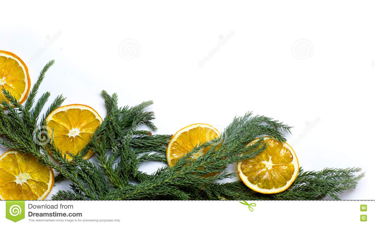 christmas bottom corner border frame of fir tree branch golden pine cones dry oranges fruit new years background for card market winter sale banner or